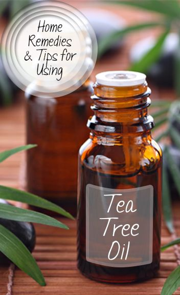 Great ideas for using tea tree oil for healing, soothing and other natural remedies. Great tips and tricks.