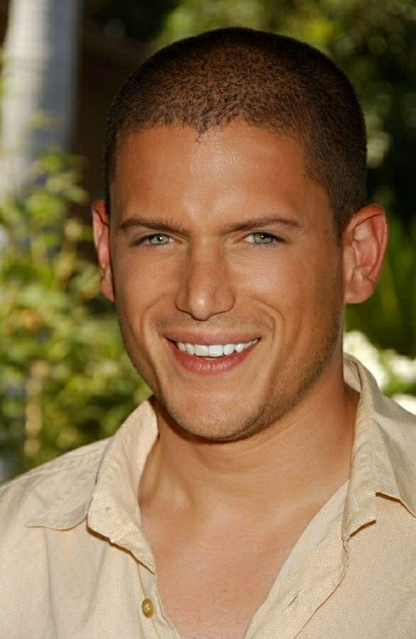 Wentworth Miller | Wentworth miller, Wentworth miller prison break ...