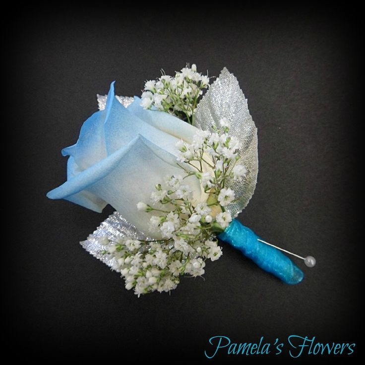 A white full-size rose tipped light blue accented with fresh babies breath, silver leaves, and light blue chiffon stem wrap. ~ Boutonniere designed by Pamela's Flowers ~ Find us online at www.pamelasflowers.net