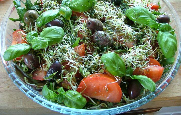 Nå som jeg har et forråd av spirer i kjøleskapet, er jeg klar for å lage noen gode salater.   Fargerik mat gjør godt for både øynene og ...