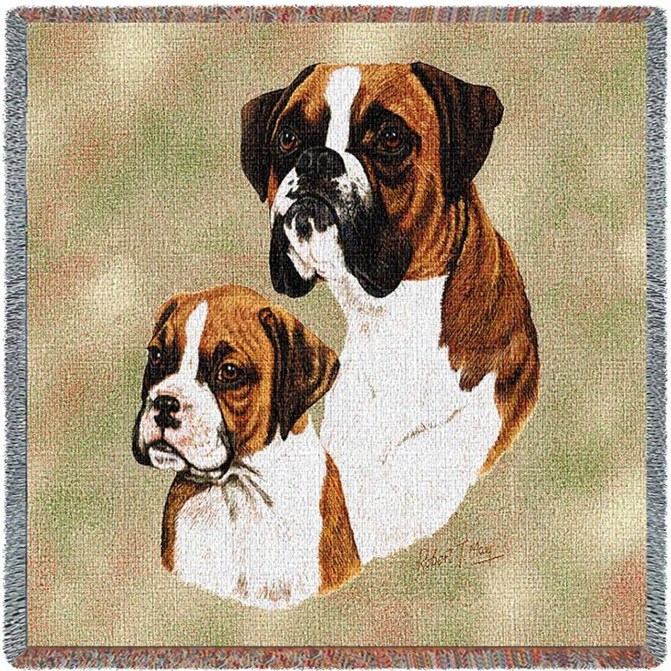 Boxer Dog and Puppy Portrait Throw