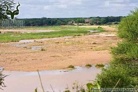 KNP - Letaba - View from River