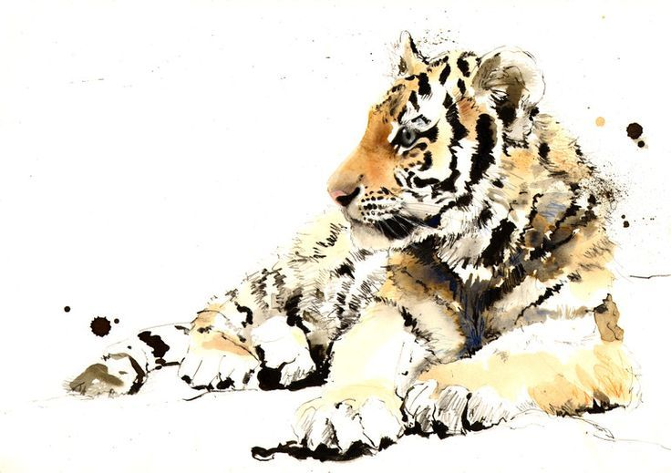 "lucy newton artist | Saatchi Online Artist: Lucy Newton; Ink, Mixed Media ""Tiger Cub"" 