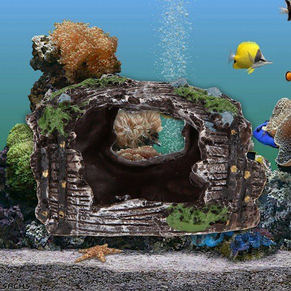#hobby_хобби Скала, которую можно разместить в аквариуме Где купить: http://ali.pub/dmor2