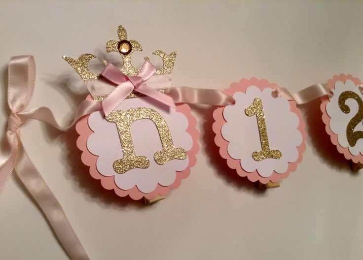 12 month photo banner princess theme newborn to one year pink and gold birthday picture banner by ThePinkPapermill on Etsy https://www.etsy.com/listing/232977286/12-month-photo-banner-princess-theme