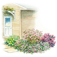 17 best images about garden plans on pinterest gardens - Free shade garden design plans ...