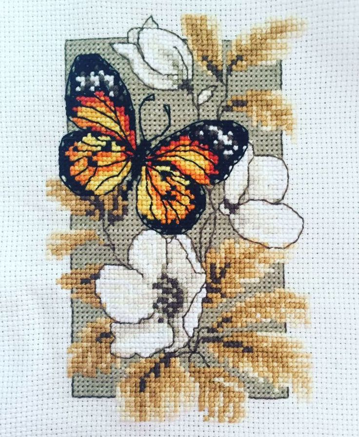 Vervaco Butterfly Kit Part 1
