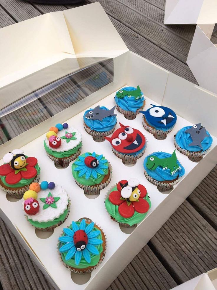 Bugs & Monster cupcakes. Dinosaur, Shark, Caterpillar, bumble bee & Lady Bird.   Check out my page https://www.facebook.com/frosted.cupcakes.invercargill/