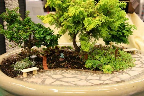 Сады в миниатюре: как сделать мини-сад своими руками и какие они бывают