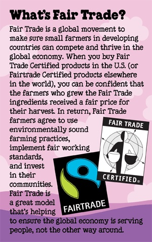 """""""Fair Trade Sidebar Info"""".  Relates to conscious consumerism because some people feel they are making a political statement by shopping fair trade. #bcintrotosoc"""