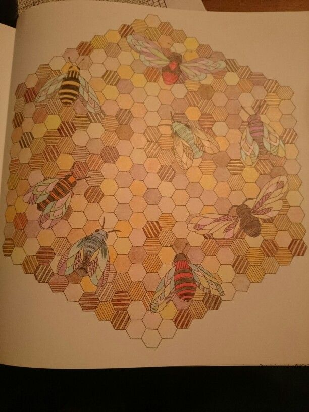 Millie Marotta Animal Kingdom Bees Ilovetea86 Coloring BooksAdult