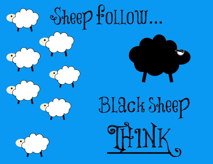 The Black Sheep Update – What Happened After Bar Rescue
