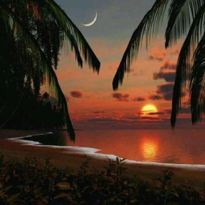 42 Best Hawaii Sunsets Images On Pinterest Beautiful