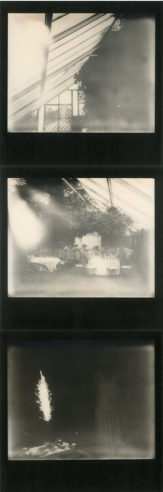 Greenhouse wedding captured on Impossible Project film #polaroid #zukistudio #impossibleproject #instantphotography #black #frame