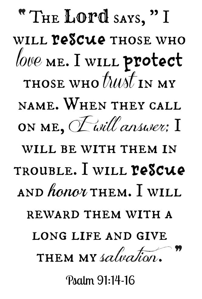 Psalm 91:14-16 ~ I would be hard pressed to choose any verse of this chapter as a favorite. If you're unfamiliar with it, I would encourage you to read & take note of the vast & astounding promises that The Lord God Almighty makes to those who love Him. Incredible.