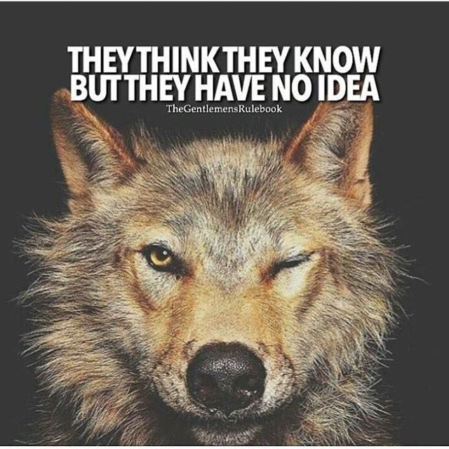 Positive Quotes They Think They Know But They Have No Idea