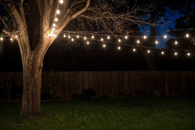 17 Best ideas about Lights In Trees on Pinterest Backyards, Outdoor tree lighting and Backyard ...