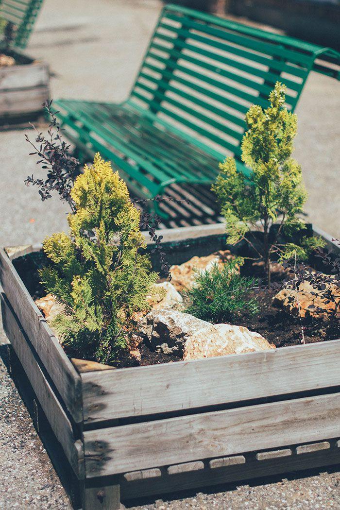 jardin vertical y huerto urbano cole-3