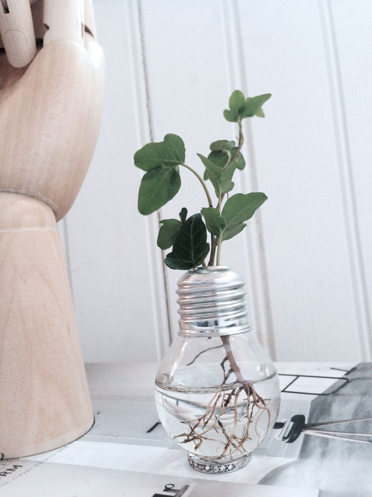 HAY hand. DIY vase.
