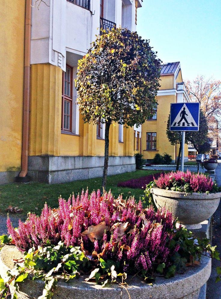 Mikkelissä tahdotaan levittää uuden ajan osallisuuden ilosanomaa. Lokakuu 2014.