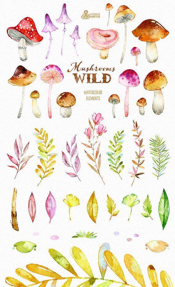 This set of 41 high quality hand painted watercolor Clipart: Mushrooms, leaves, branchs etc). Perfect graphic for invitations, greeting cards, photos, posters, quotes and more.  -----------------------------------------------------------------  INSTANT DOWNLOAD Once payment is cleared, you can download your files directly from your Etsy account.  -----------------------------------------------------------------  This listing includes 41 Images:  17 x Mushrooms in PNG (transparent background)…