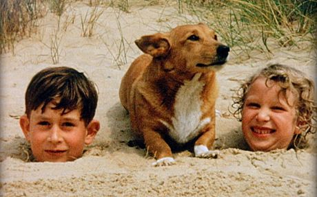 [pictured: Prince Charles as a boy] The Queen's Corgis designated a 'vulnerable' breed as Pembroke Welsh dogs go out of fashion - Telegraph