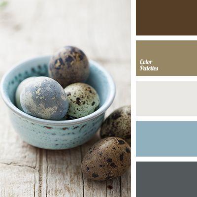 Best 25 Blue Brown Bedrooms Ideas On Pinterest Living