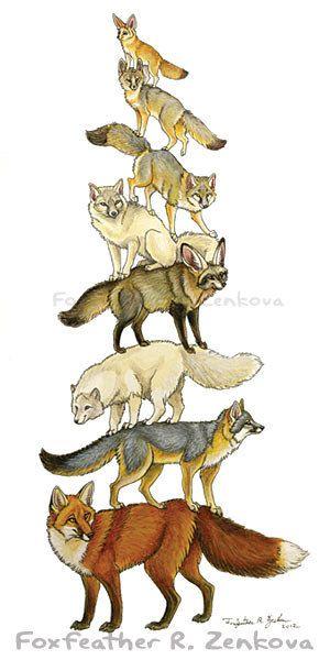 Fox Stack Painting Print - Fox Art, Wall art, animal stack, fennec, bat-eared…