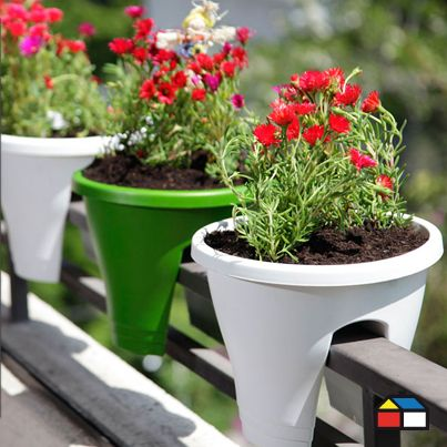 ¿Vives en departamento y quieres que llegue al primavera a tu balcón? #Macetero