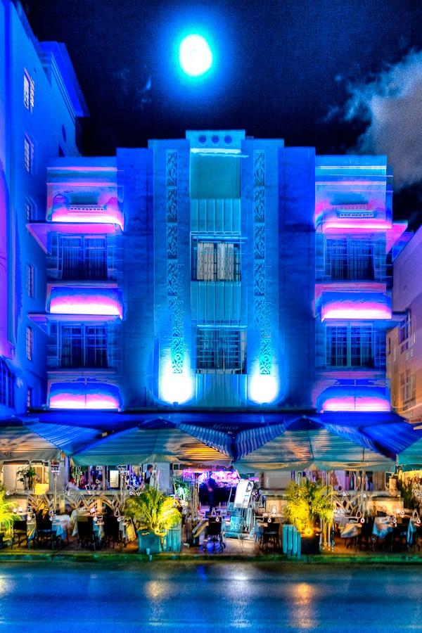 Miami South Beach Local Wildlife: 17 Best Ideas About Miami Art Deco On Pinterest