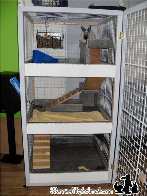 165 best images about rabbit home toys on pinterest for Build indoor rabbit cage