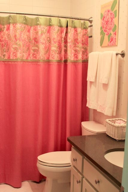 1000 images about ideas for the girl 39 s bathroom on for Pink and green bathroom ideas