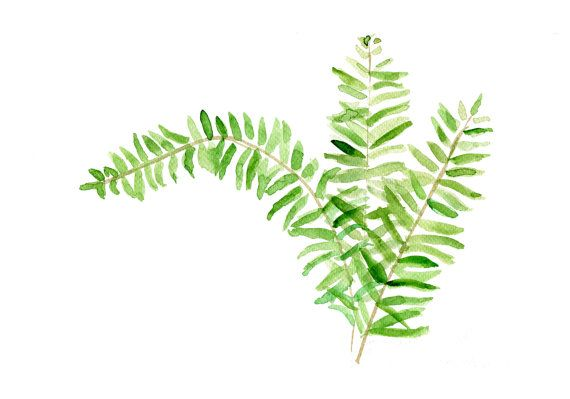 Fern art print of  original watercolor painting, minimalist , botanical, plants print, green, zen on Etsy, $21.00