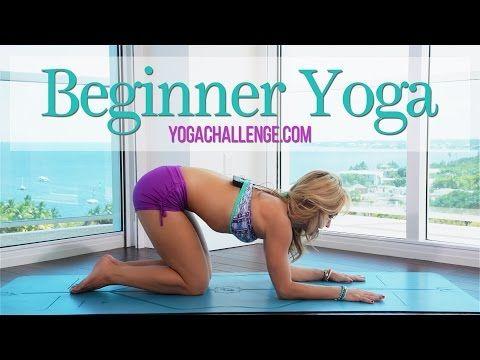 Introduction to Ashtanga Yoga with Kino MacGregor - YouTube