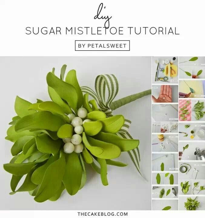 Tutorial can be found here: http://thecakeblog.com/2012/12/sugar-mistletoe-tutorial.html