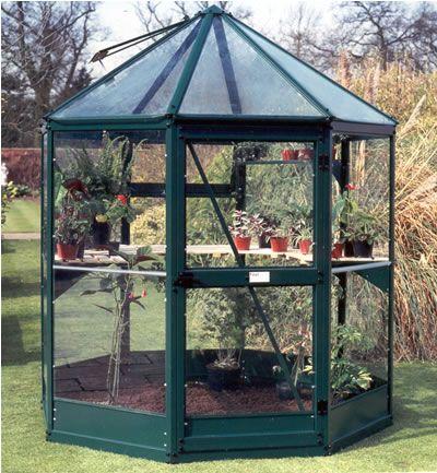 Corner green house home sweet home pinterest for Octagonal greenhouse plans