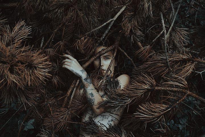 O fotógrafo italiano Alessio Albi resolveu criar um ensaio totalmente inovador em que a beleza e a sensualidade das mulheres são misturadas a elementos da natureza.