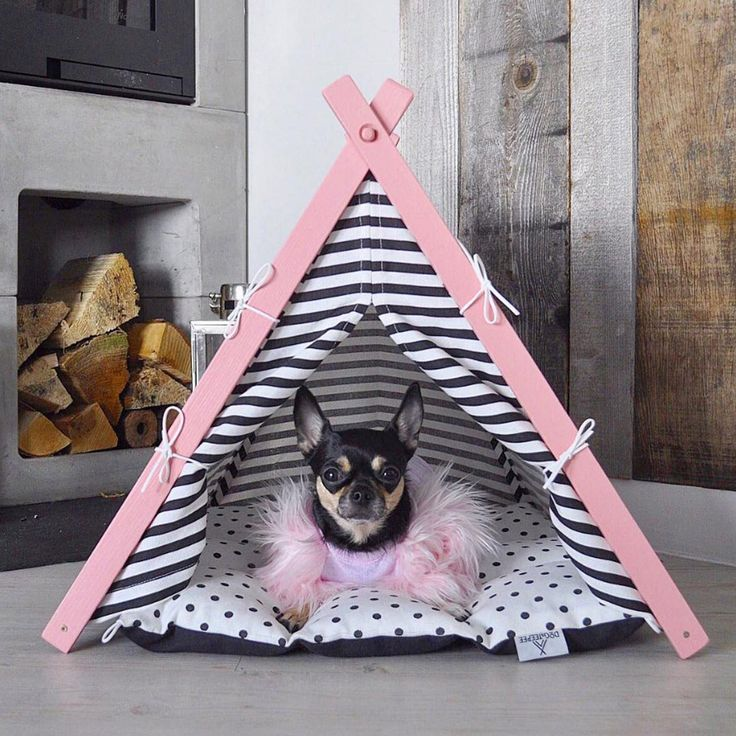 Personalized dog teepee. Custom name bed. Dog Gift. Small