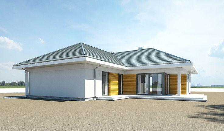Projekt domu Parterowy - wizualizacja tylna 3