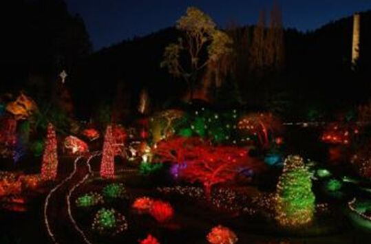 在加拿大BC省过圣诞的N种可能 #布查特花园 #加拿大