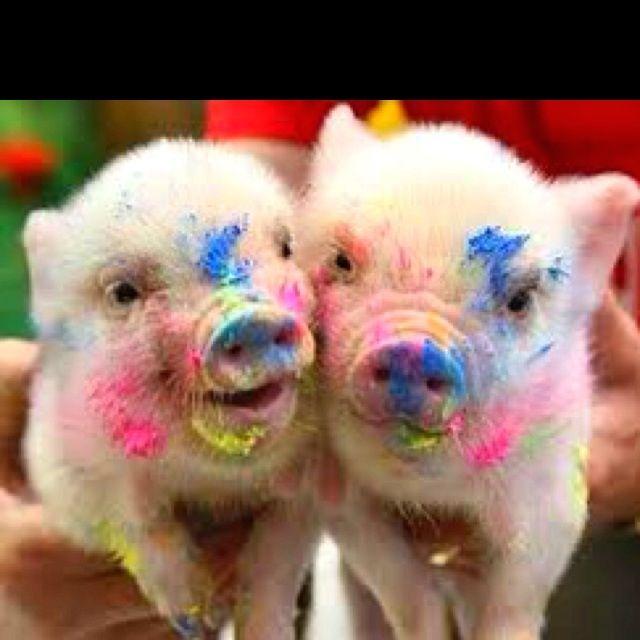 Baby painted piggies