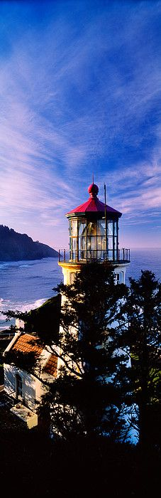 Lighthouse at a coast, Heceta Head Lighthouse, Heceta Head, Lane County, Oregon, USA