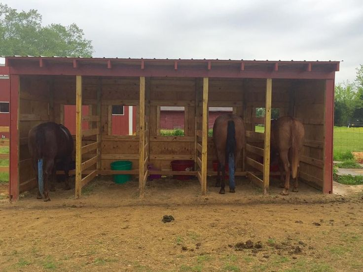 Buffet Style feed shed. Built into the fence line so you can feed from the outside. Great for horses who do not like to share.