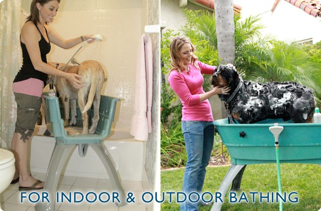 Booster bath dog grooming station