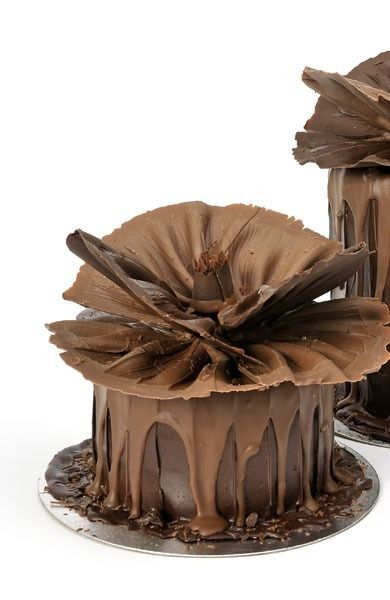 choco cake ~ looks wonderful (and delicious)
