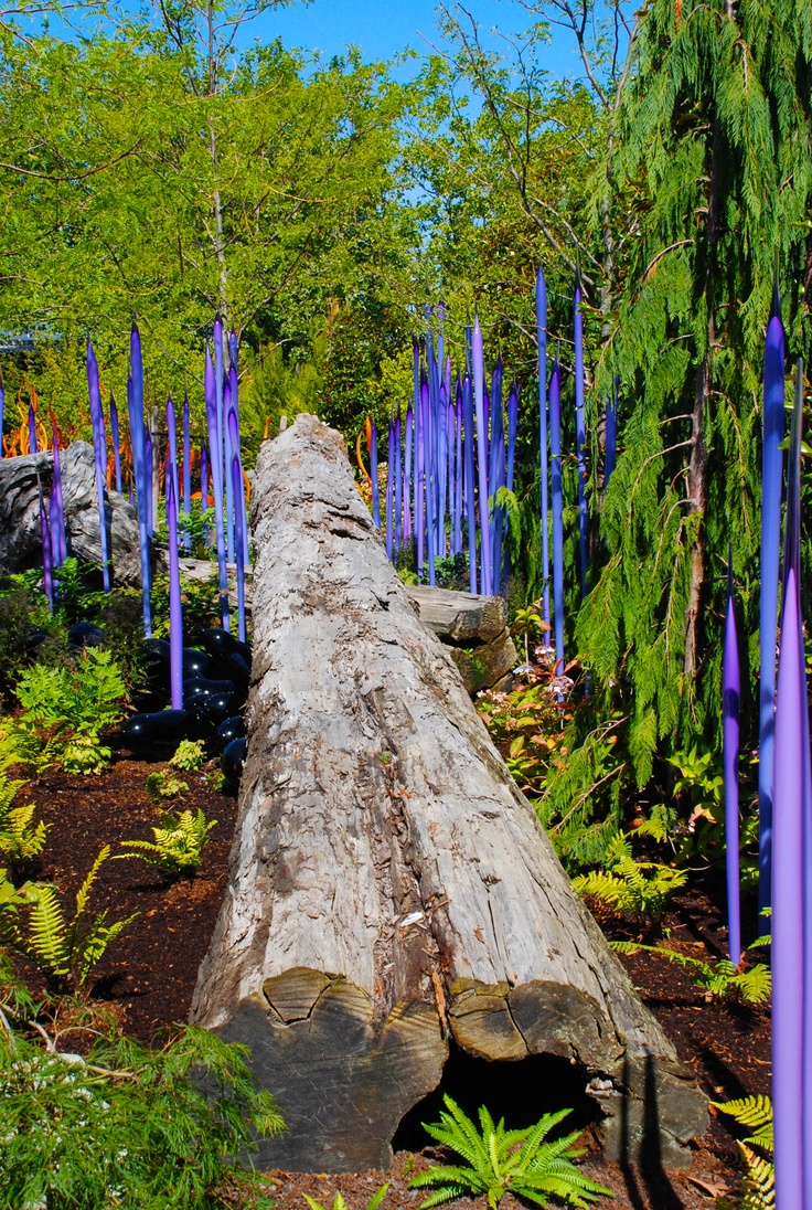 17 Best Images About Chihuly Art Glass On Pinterest Missouri Botanical Garden Glass Art And