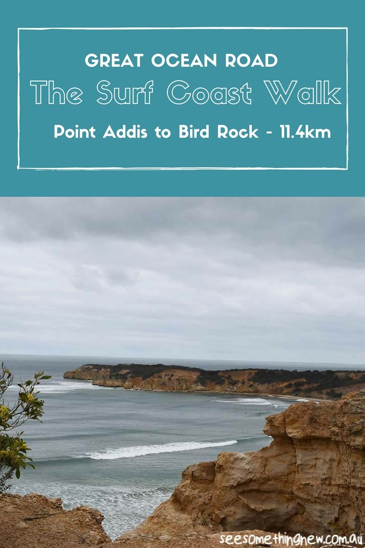 The 44km Surf Coast Walk on the Great Ocean Road in Victoria is the perfect mutli day walk for beginners. Beautiful beaches, bushwalking, camping or accomodation and finish with a beer at a popular local pubs!