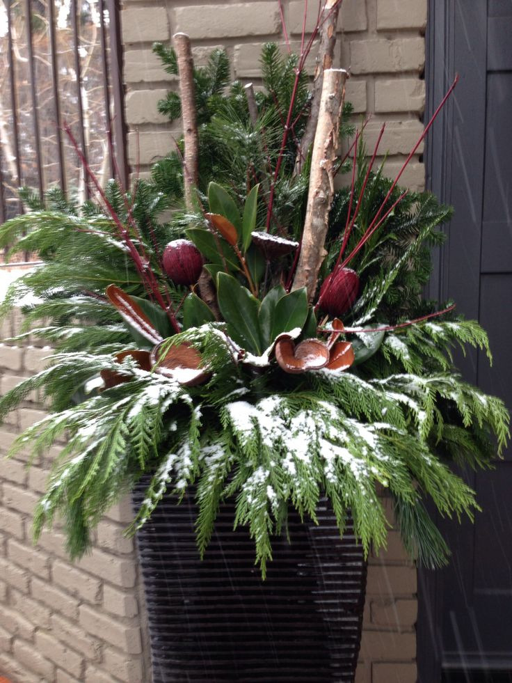 Winter planter  Christmas Stuff! ~ 032547_Holiday Decorating Ideas For Outdoor Planters