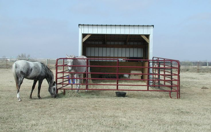 Small Horse Barn Plans shed planning permission uk | saxlynettxy