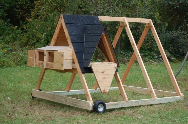 A-frame chicken tractor with lots of building process photos.